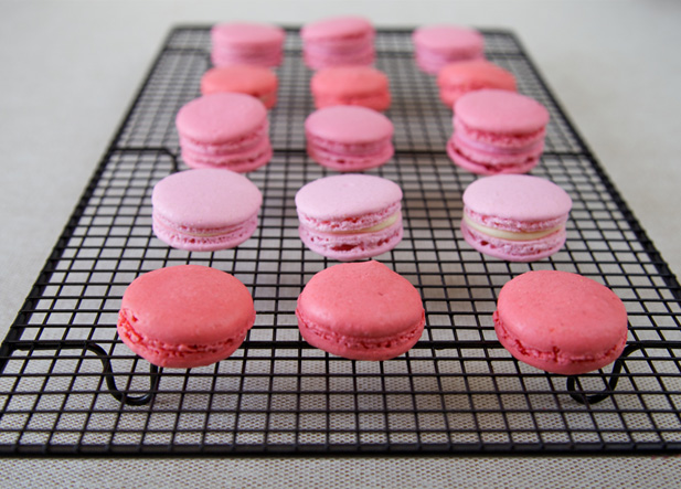 Macarons cooling on a wire rack